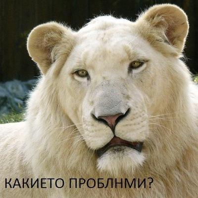 Влад Унгурян, 25 июля 1998, Сторожинец, id211344093